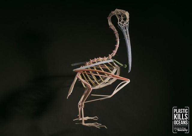 Death-Straws---Pelican